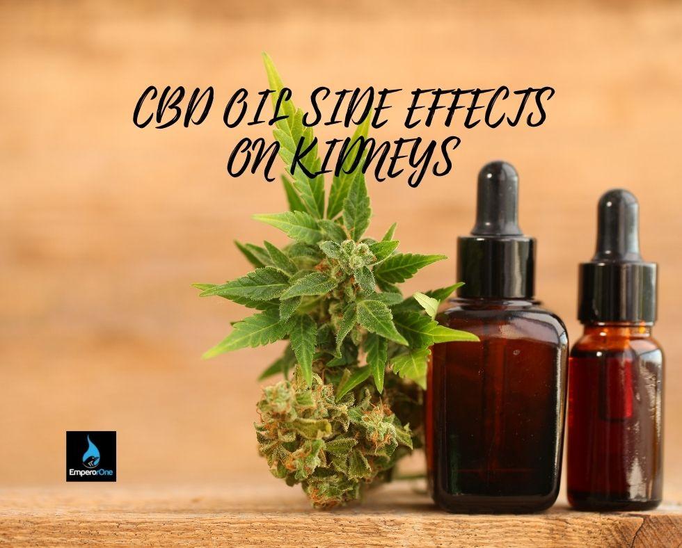 cbd oil side effects on kidney